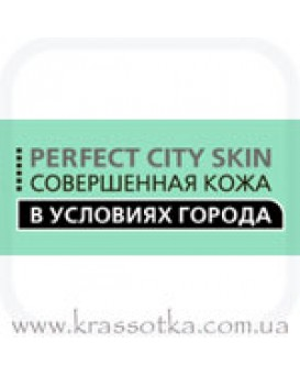 Perfect City Skin